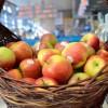 Małopolskie jabłka dla pasażerów krakowskiego lotniska